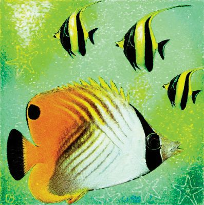 # rcab71681s Fish A Go Go II by Jenny Morton Art Print