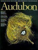 Audubon Magazine Subscription