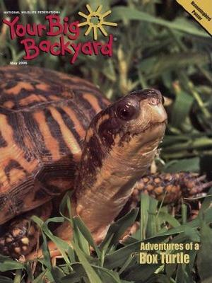 Your Big Backyard Magazine Subscription
